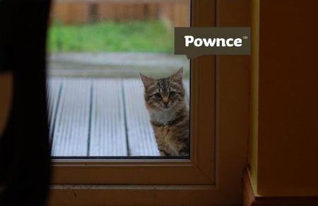 PownceCat